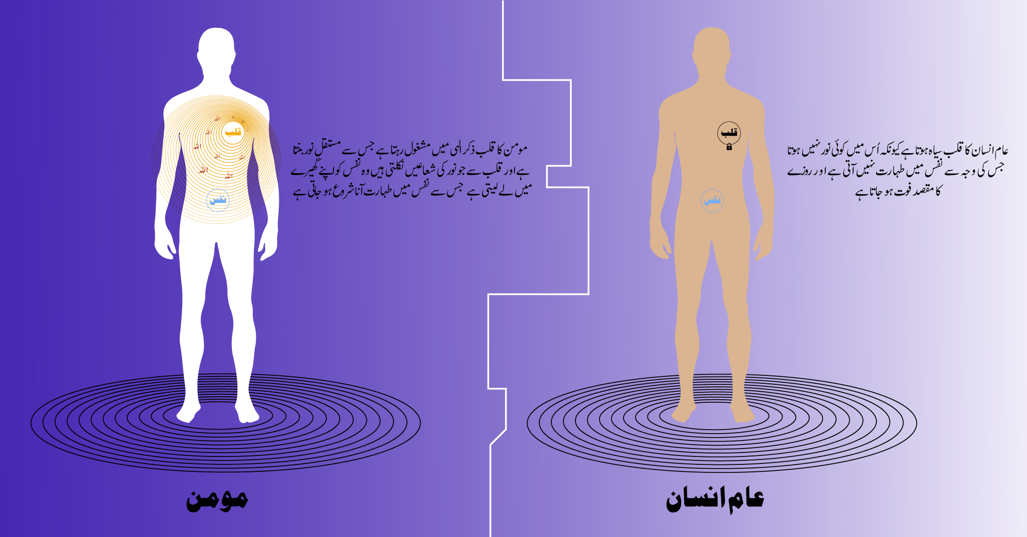momin-line-diagram